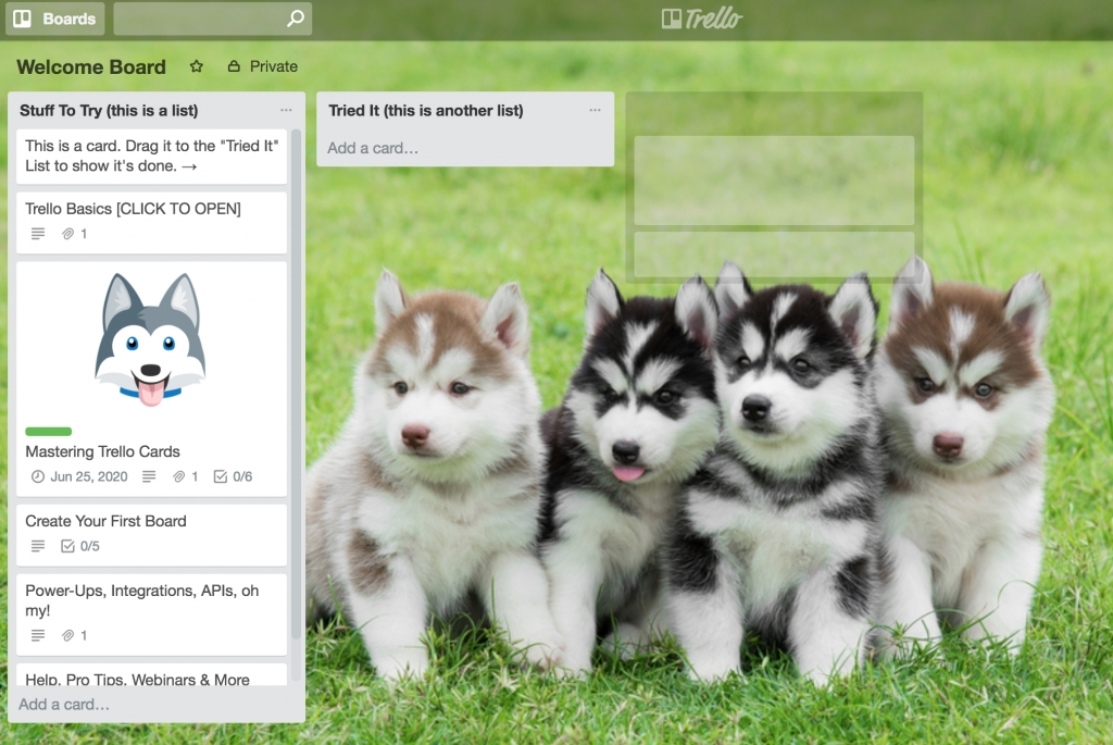 Trello board with puppies Digital Marketing